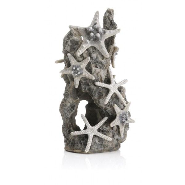 Oase biOrb dekorace kámen s mořskými hvězdami - Akvaristika Oase biOrb Dekorace a příslušenství Ornamenty