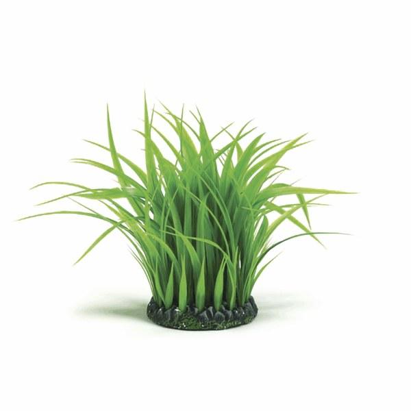 Oase biOrb travní kolo L - Akvaristika Oase biOrb Dekorace a příslušenství Rostliny