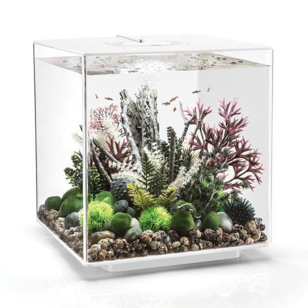 Oase biOrb CUBE 60 LED (akvárium bílé) - Akvaristika Oase biOrb Akvária biOrb biOrb CUBE