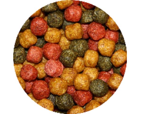 Tříbarevné krmivo pro KOI (0,4kg- 6mm) - Ryby a potřeby pro ryby Krmiva pro ryby Krmiva pro okrasné ryby