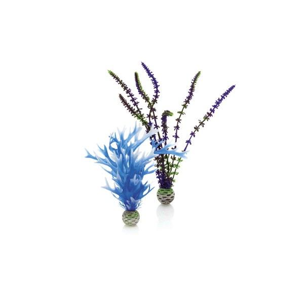 Oase biOrb set rostlin modrá a fialová - Akvaristika Oase biOrb Dekorace a příslušenství Rostliny